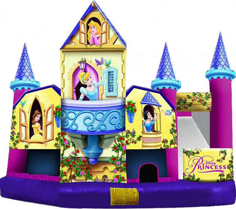 Disney Princess Castle Combo
