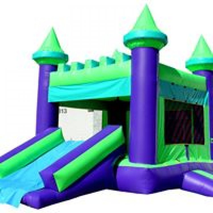 PURPLE & GREEN CASTLE W/ 2 SLIDES